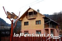 Pensiunea Ady - accommodation in  Motilor Country, Arieseni (22)
