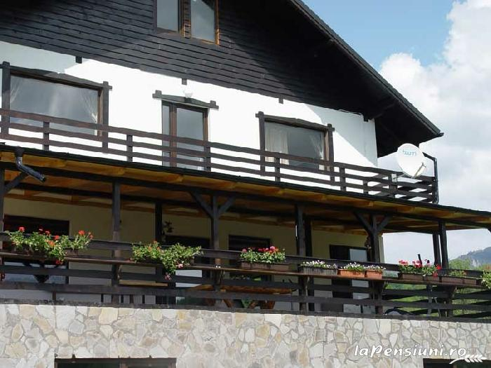 Casa Georgescu - accommodation in  Rasnov (17)