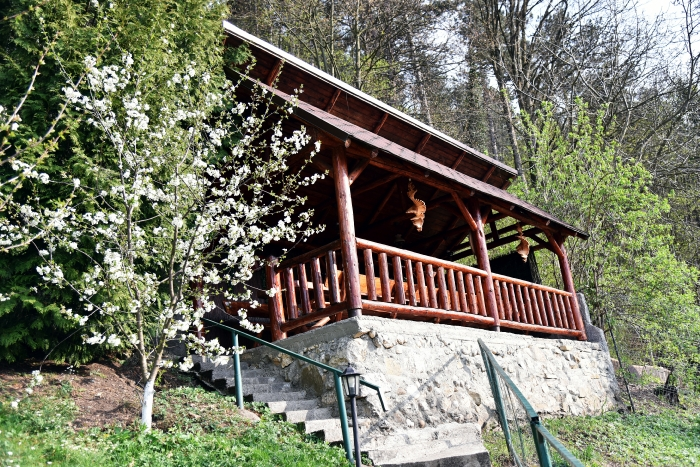 Pensiunea Cristina - accommodation in  Rasnov (10)