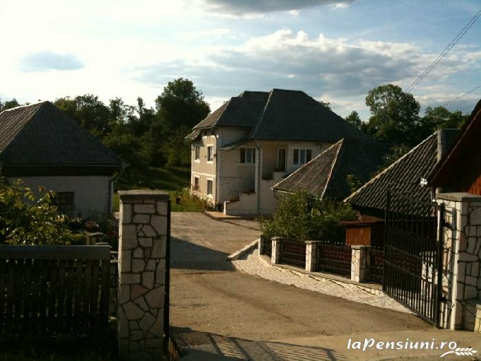 Pensiunea Dragus - accommodation in  Maramures Country (01)