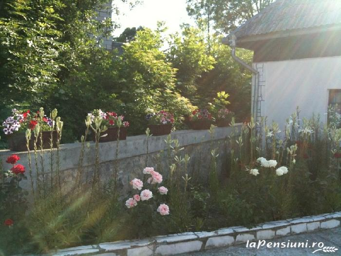 Pensiunea Dragus - accommodation in  Maramures Country (02)