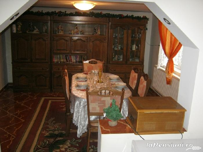 Pensiunea Dragus - accommodation in  Maramures Country (03)