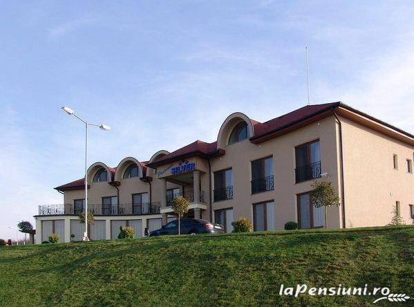 Pensiune Silver - accommodation in  Crisana (01)