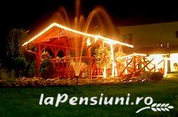 Pensiune Silver - accommodation in  Crisana (09)
