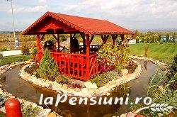 Pensiune Silver - accommodation in  Crisana (10)