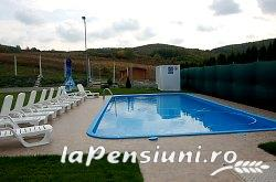 Pensiune Silver - accommodation in  Crisana (11)