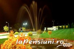 Pensiune Silver - accommodation in  Crisana (21)