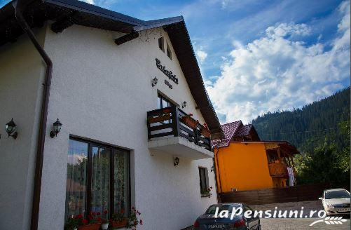Casa Gabi - accommodation in  Bucovina (02)