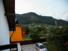 Casa Gabi - accommodation in  Bucovina (31)