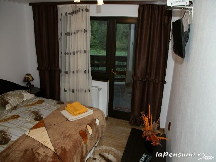 Casa Gabi - accommodation in  Bucovina (42)