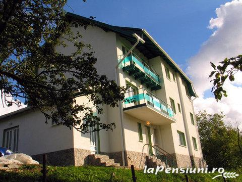 Vila Verde - accommodation in  Valea Doftanei (10)