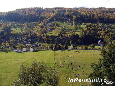 Vila Verde - accommodation in  Valea Doftanei (11)