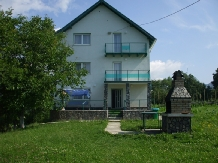 Vila Verde - accommodation in  Valea Doftanei (12)