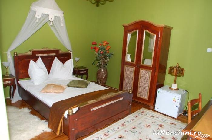Pensiunea Regal - accommodation in  Transylvania (03)