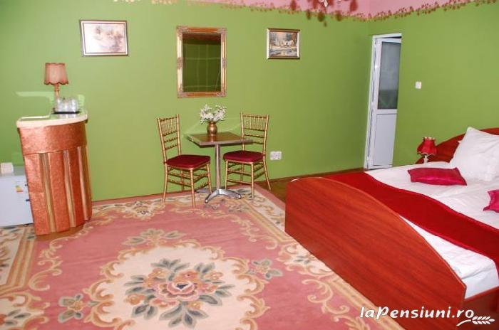 Pensiunea Regal - accommodation in  Transylvania (14)