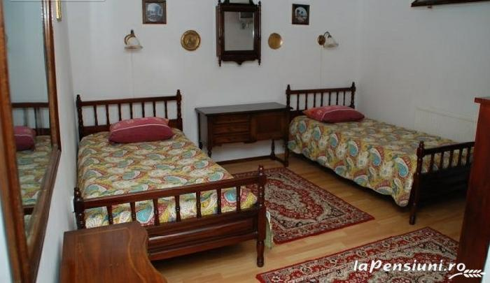 Pensiunea Regal - accommodation in  Transylvania (15)