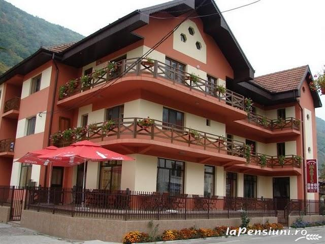 Pensiunea Magic - accommodation in  Cernei Valley, Herculane (01)