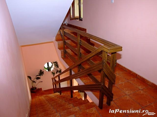 Pensiunea Magic - accommodation in  Cernei Valley, Herculane (03)