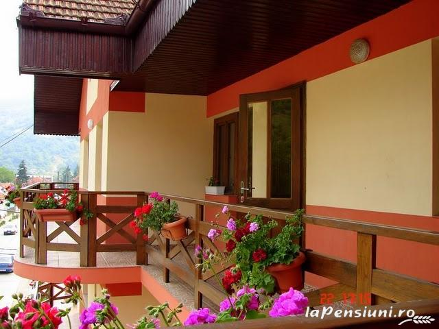 Pensiunea Magic - accommodation in  Cernei Valley, Herculane (17)
