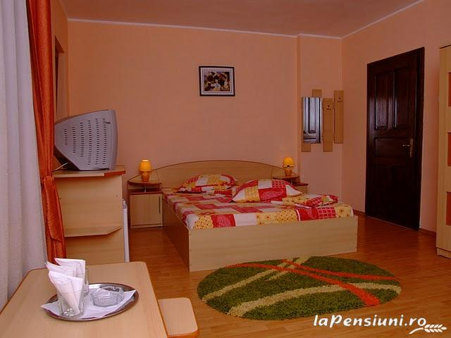 Pensiunea Magic - accommodation in  Cernei Valley, Herculane (18)