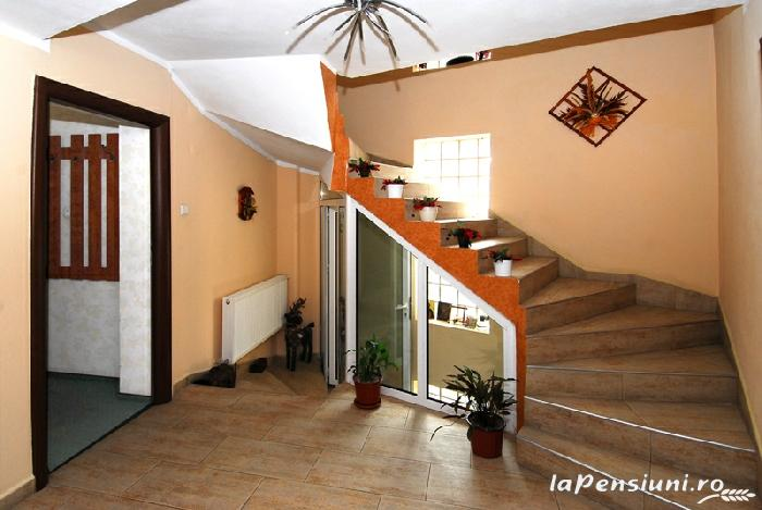 Pensiunea Select - accommodation in  Cernei Valley, Herculane (10)
