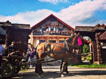 Rural accommodation at  Pensiune Maramures