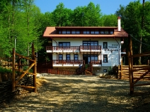 Rural accommodation at  Pensiunea Stejarul