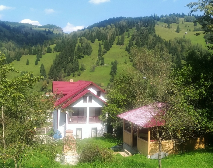 Vila Cetina - accommodation in  Bucovina (01)