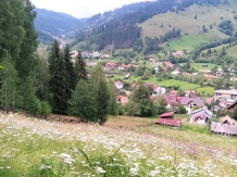 Vila Cetina - accommodation in  Bucovina (02)