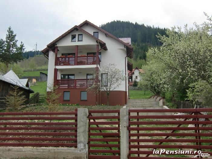 Vila Cetina - accommodation in  Bucovina (06)