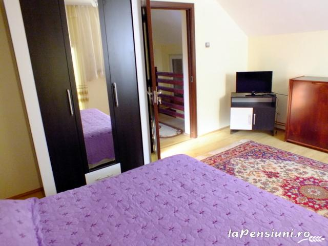Vila Cetina - accommodation in  Bucovina (29)