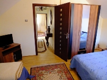 Vila Cetina - accommodation in  Bucovina (32)