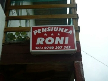 Pensiunea Roni - accommodation in  Prahova Valley (01)