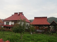 Pensiunea Man Nistor - accommodation in  Maramures Country (01)