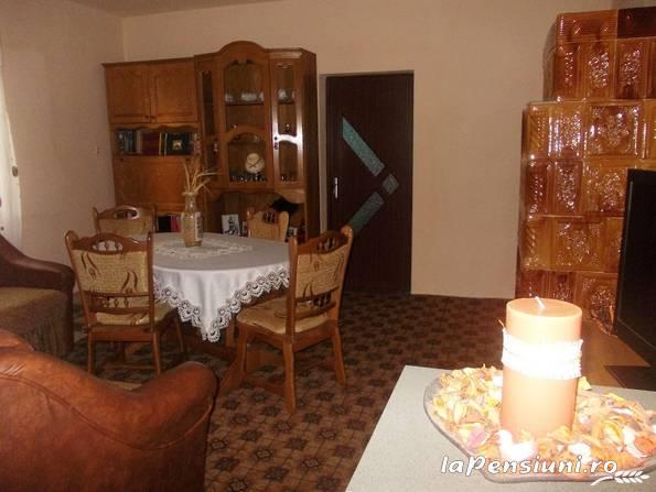 Pensiunea Man Nistor - accommodation in  Maramures Country (03)