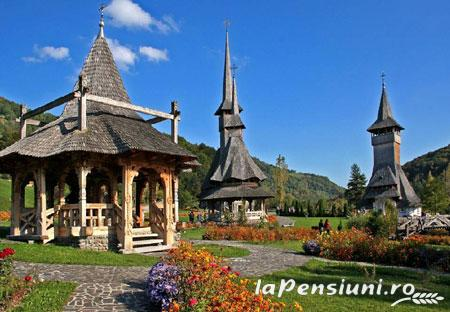 Pensiunea Man Nistor - accommodation in  Maramures Country (Surrounding)