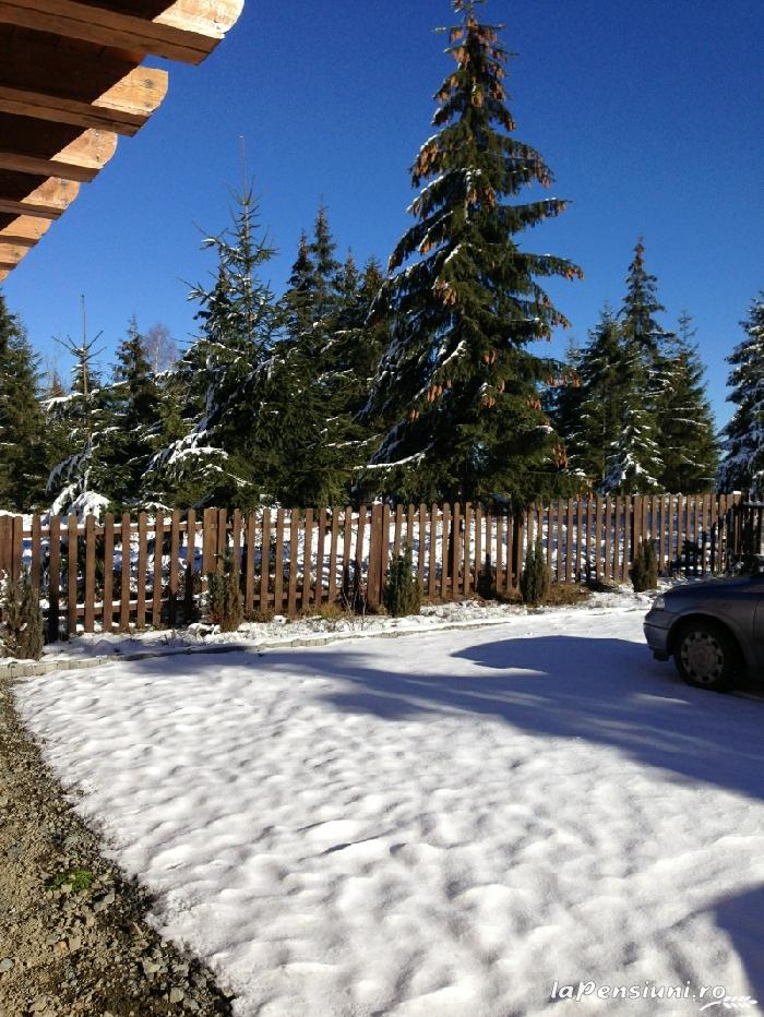 Cabana Belis - accommodation in  Apuseni Mountains, Belis (04)