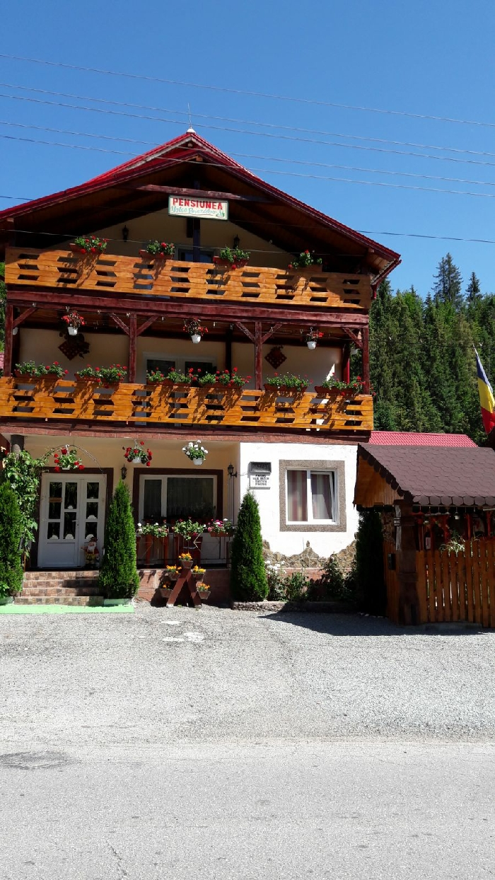 Pensiunea Valea Brazilor - accommodation in  Apuseni Mountains, Motilor Country, Arieseni (02)