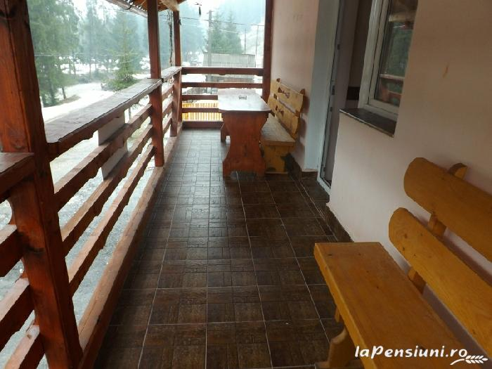 Pensiunea Valea Brazilor - accommodation in  Apuseni Mountains, Motilor Country, Arieseni (06)