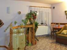 Pensiunea Valea Brazilor - accommodation in  Apuseni Mountains, Motilor Country, Arieseni (24)