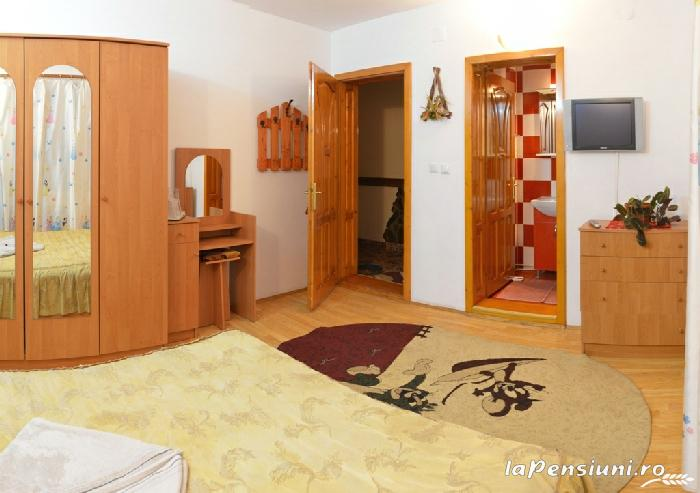 Pensiunea Valea Brazilor - accommodation in  Apuseni Mountains, Motilor Country, Arieseni (29)