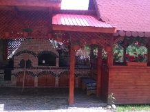Pensiunea Valea Brazilor - accommodation in  Apuseni Mountains, Motilor Country, Arieseni (40)