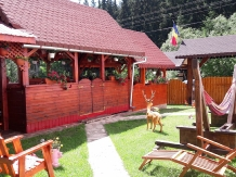Pensiunea Valea Brazilor - accommodation in  Apuseni Mountains, Motilor Country, Arieseni (43)