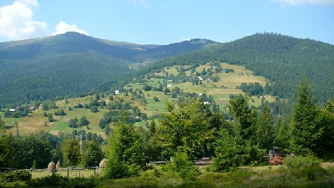 Pensiunea Valea Brazilor - accommodation in  Apuseni Mountains, Motilor Country, Arieseni (Surrounding)