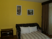 Casa cu flori - accommodation in  Hateg Country (05)