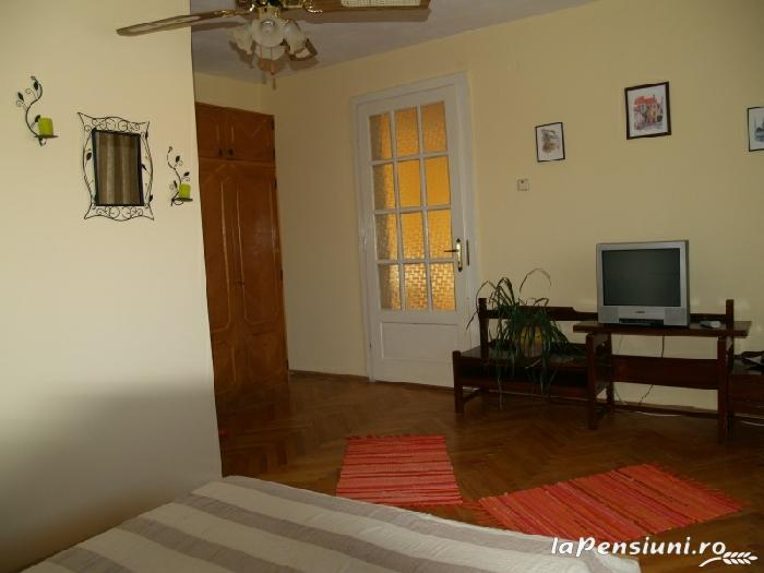 Casa cu flori - accommodation in  Hateg Country (11)