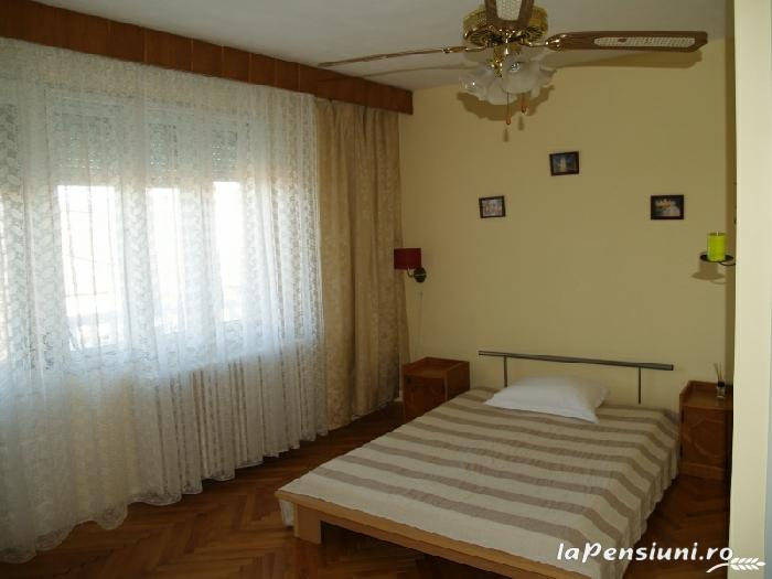 Casa cu flori - accommodation in  Hateg Country (12)