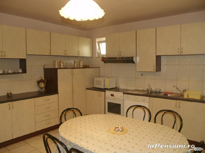 Casa cu flori - accommodation in  Hateg Country (13)