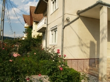 Casa cu flori - accommodation in  Hateg Country (14)