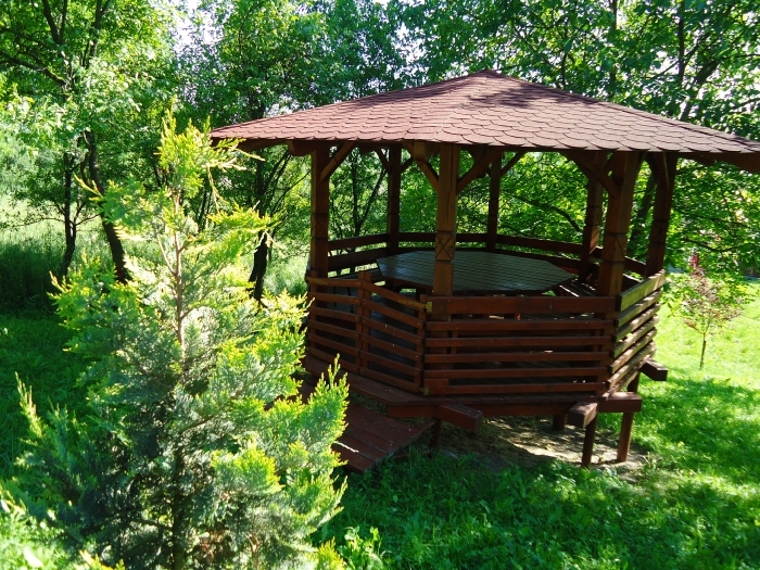 Pensiunea Agroturistica Renata - accommodation in  Apuseni Mountains (22)